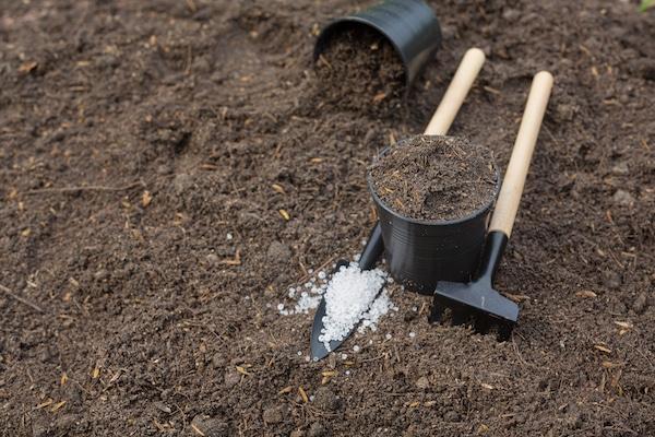 jak poprawić żyzność gleby w ogrodzie