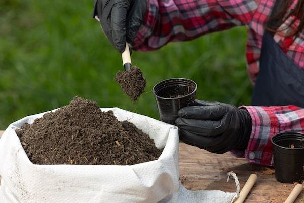 soda oczyszczona badanie gleby