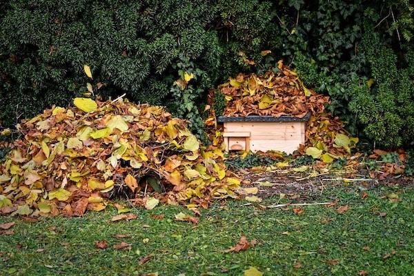 domek i liście dla jeża