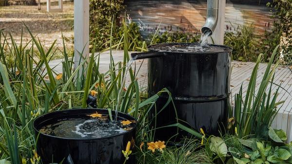 magazynowanie deszczówki w ogrodzie