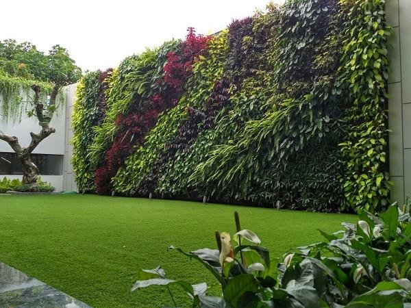 Ogród wertykalny na zewnątrz