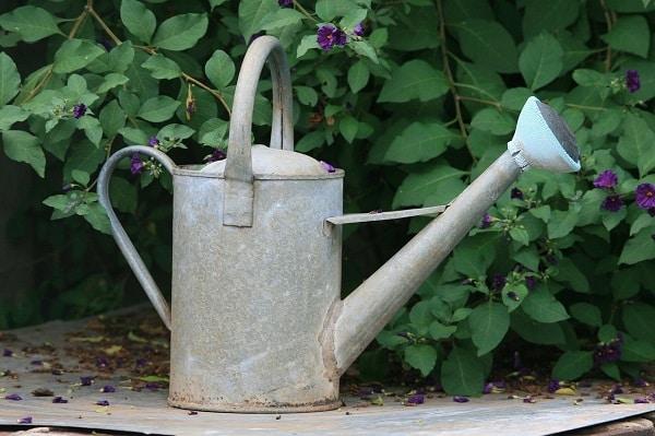 Zrównoważony ogród – Konewka