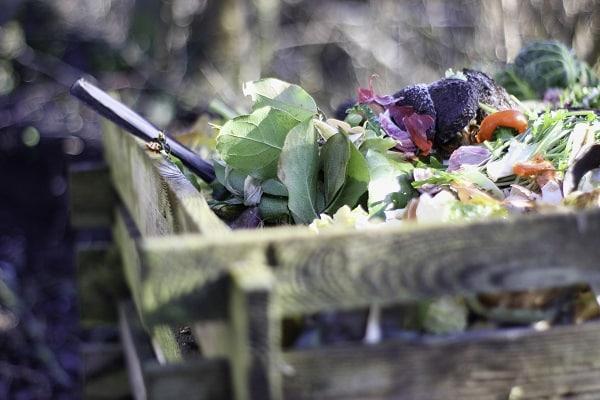 Zrównoważony ogród – Kompostownik