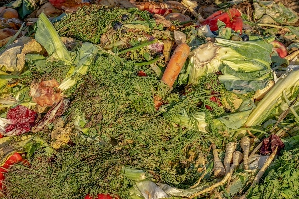 Resztki warzyw