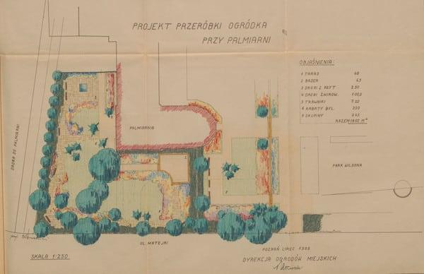 projekt ogródka