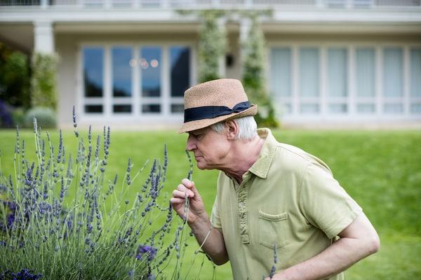 hortiterapia ogród sensoryczny