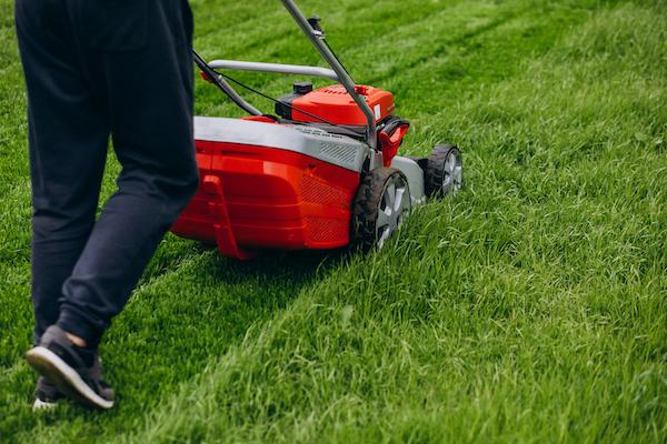 koszenie trawnika lipiec