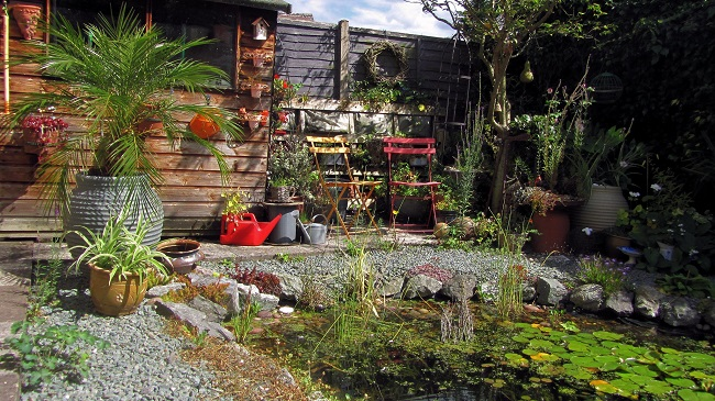 Sierpień w ogrodzie