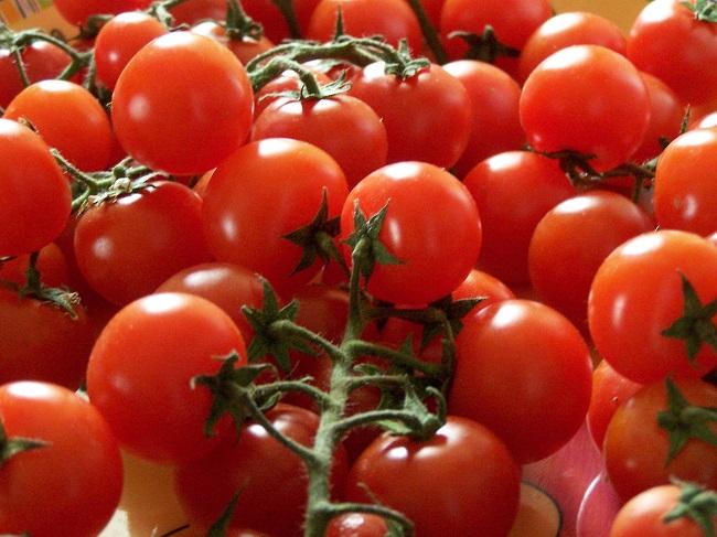 Pomidory włoskie - Pachino
